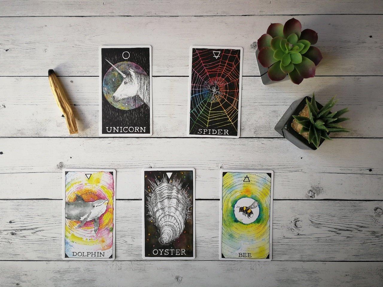 scegli una carta febbraio
